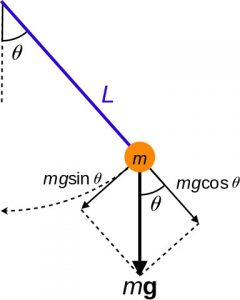 Generalized coordinates of a simple pendulum